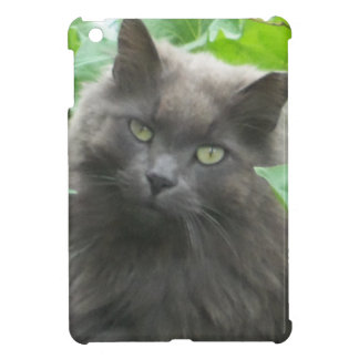 Long Haired Gray Russian Blue Cat iPad Mini Case