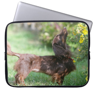 Long-haired Miniature Dachshund 1 Computer Sleeves