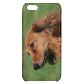 Long-haired Miniature Dachshund 2 iPhone 5C Cover
