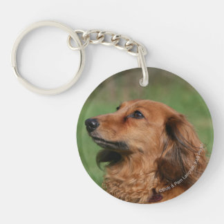 Long-haired Miniature Dachshund 2 Keychain