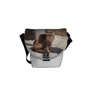 Long Haired Persian Cat Petra Courier Bag