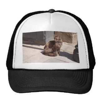 Long Haired Persian Cat Petra Trucker Hats