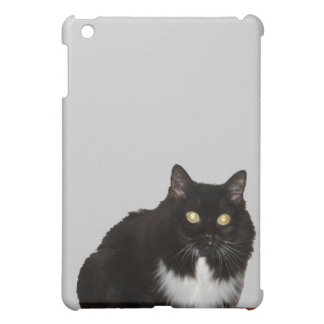 Long Haired Pet Cat iPad Mini Cases