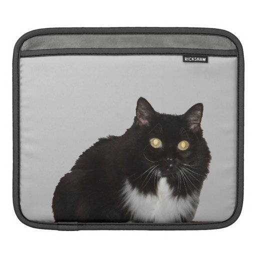 Long Haired Pet Cat iPad Sleeves