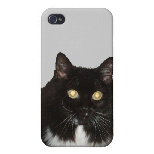 Long Haired Pet Cat iPhone 4/4S Cover