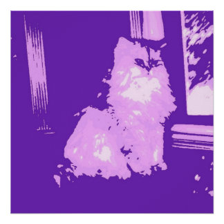 Long-haired Purple Kitty Cat Poster