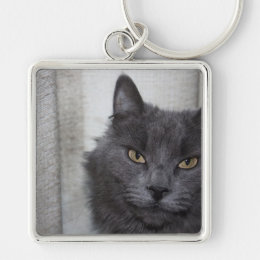 Long haired Russian Blue Cat Keychain