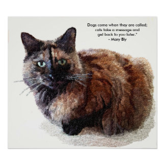 Long Haired Tortoise Shell Cat Prints and Posters