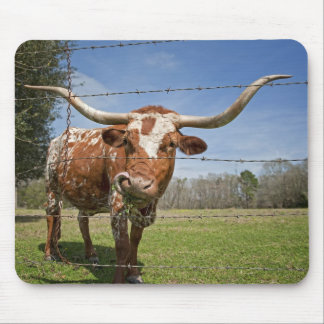 Long Horn Cow Mouse Pad