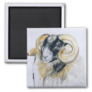 Long Horn Sheep 2 Inch Square Magnet