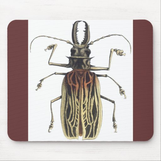 Long-Horned Beetle, Prionus Cervicornis Mouse Pad