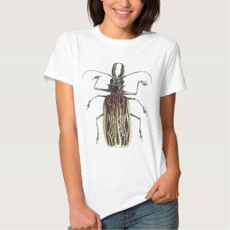 Long-Horned Beetle, Prionus Cervicornis T-Shirt