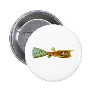 Long-horned Cowfish Button