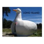 LONG ISLAND POST CARD