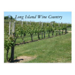 Long Island Wine Country Post Cards