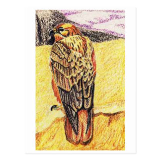 Long Legged Buzzard Postcard