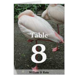 Long Legged Flamingo Card