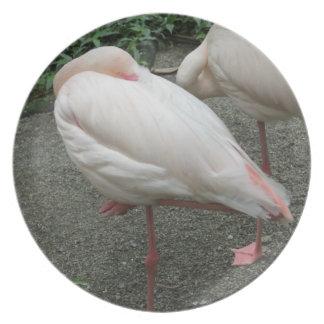 Long Legged Flamingo Plate