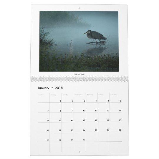 Long-Legged Wading Birds 2013 Calendar