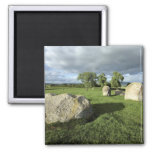 Long Meg and Her Daughters Stone Circle photo Magnet