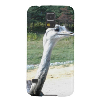 Long Neck Ostrich Profile Galaxy S5 Cases