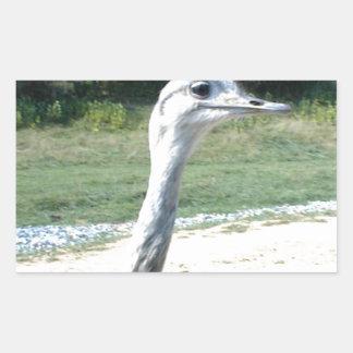 Long Neck Ostrich Profile Rectangular Sticker