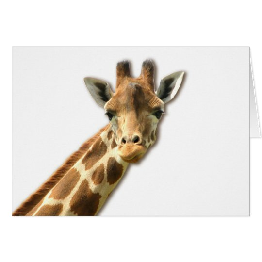 Long Necked Giraffe Greeting Card