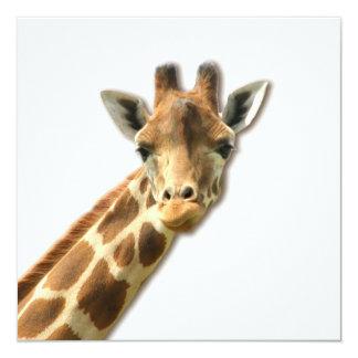 """Long Necked Giraffe  Invitations 5.25"""" Square Invitation Card"""
