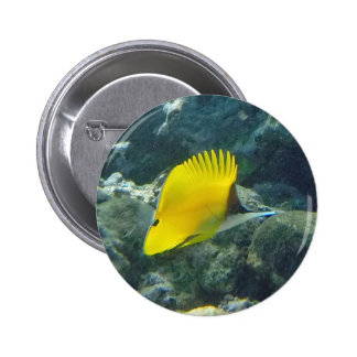 Long Nose Butterfly Fish Button