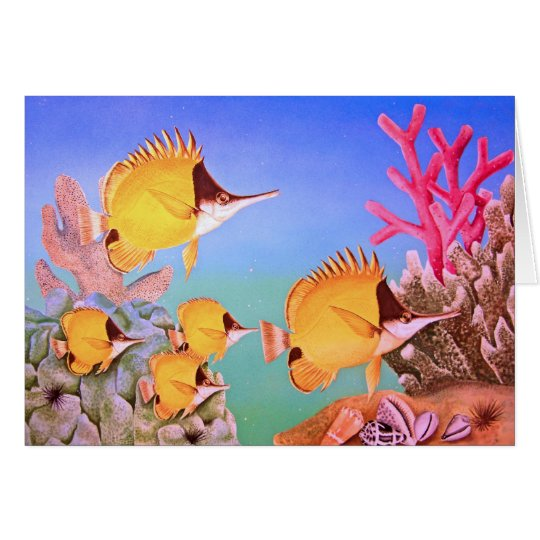 Long-nose Butterfly Fish Card