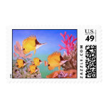 Long-nose Butterfly Fish Stamp