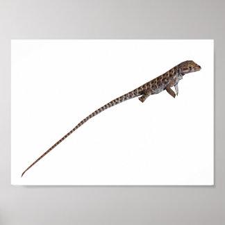 Long-Nose Leopard Lizard Print