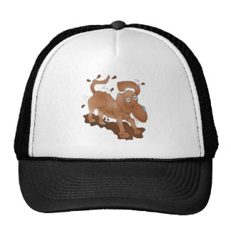 Long nosed dog shaking off the muck trucker hat