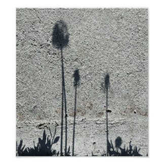 """""""Long Shadows"""" Shadow Grass & Flowers Poster"""