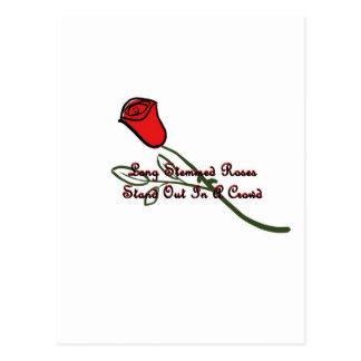 Long Stemmed Roses Postcard