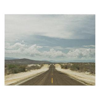 Long Straight Road Through Mexican Baja Landscape Panel Wall Art