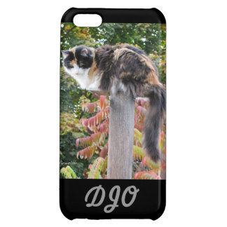 Long tail calico case for iPhone 5C