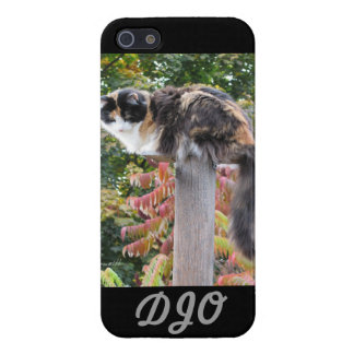 Long tail calico iPhone SE/5/5s cover