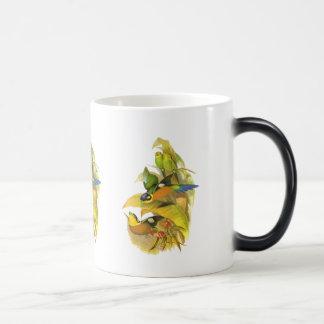 Long-tailed Broadbill Mug
