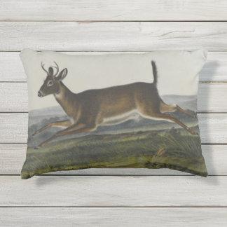 Long Tailed Deer by John James Audubon Outdoor Pillow