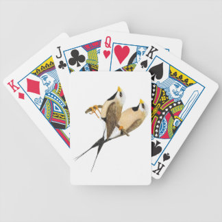 Long-tailed Finch Pair - Poephila acuticauda Bicycle Playing Cards