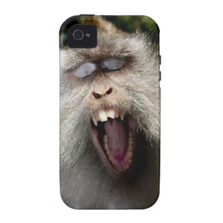 Long-tailed macaques (Macaca fascicularis) Case-Mate iPhone 4 Case