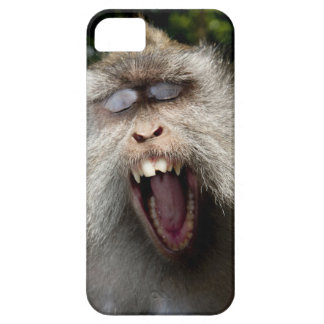 Long-tailed macaques (Macaca fascicularis) iPhone SE/5/5s Case