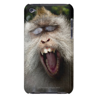 Long-tailed macaques (Macaca fascicularis) iPod Touch Case-Mate Case