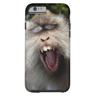 Long-tailed macaques (Macaca fascicularis) Tough iPhone 6 Case