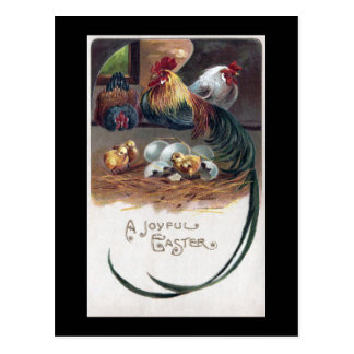 Long Tailed Rooster and Hens Joyful Easter Postcard