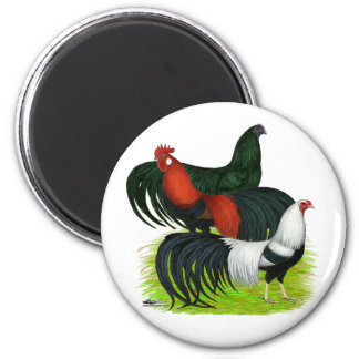 Long-tailed Rooster Trio Magnets