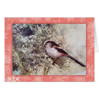 Long-tailed tit vintage Christmas card
