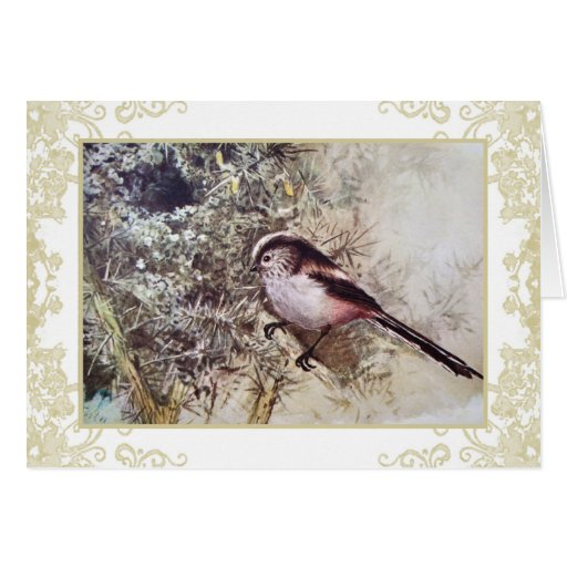 Long-tailed tit vintage notecard greeting card