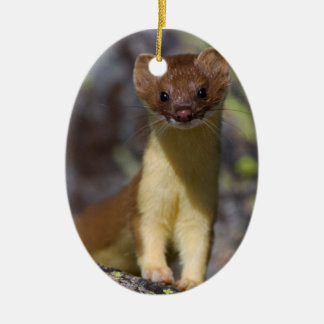 Long-tailed Weasel Ceramic Ornament